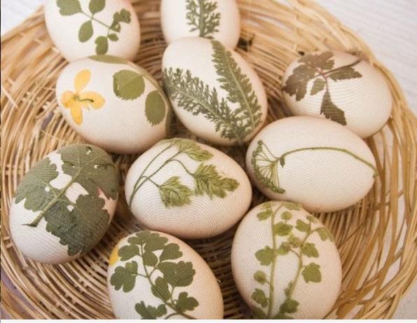 decoratiune-oua-cu-plante-paste