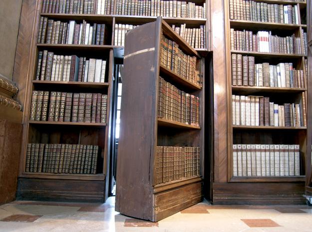 biblioteca-camera-ascunsa