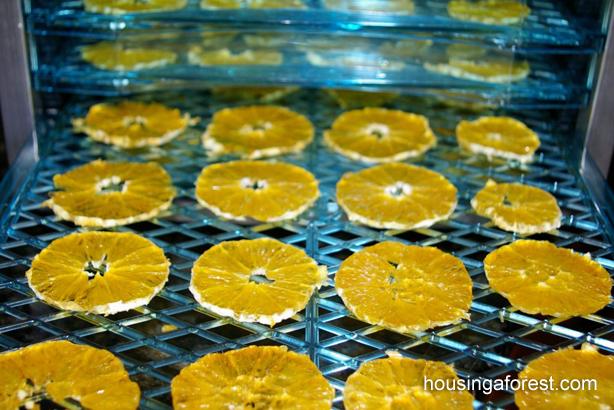 cum sa faci fructe deshidratate 5