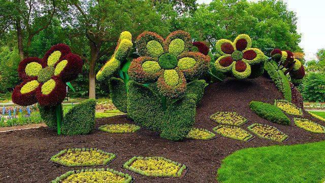 aranjamente flori 19