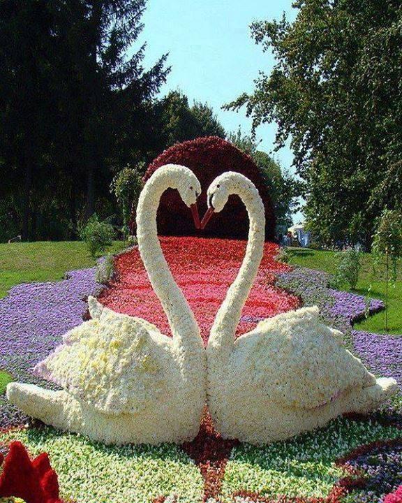 aranjamente flori 6