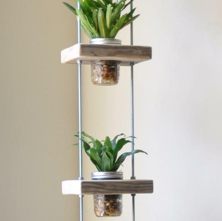 plante aromatice de interior12