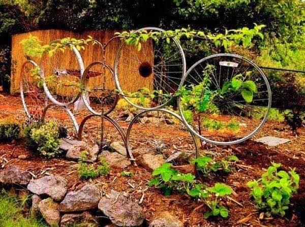rotile unei biciclete vechi (3)