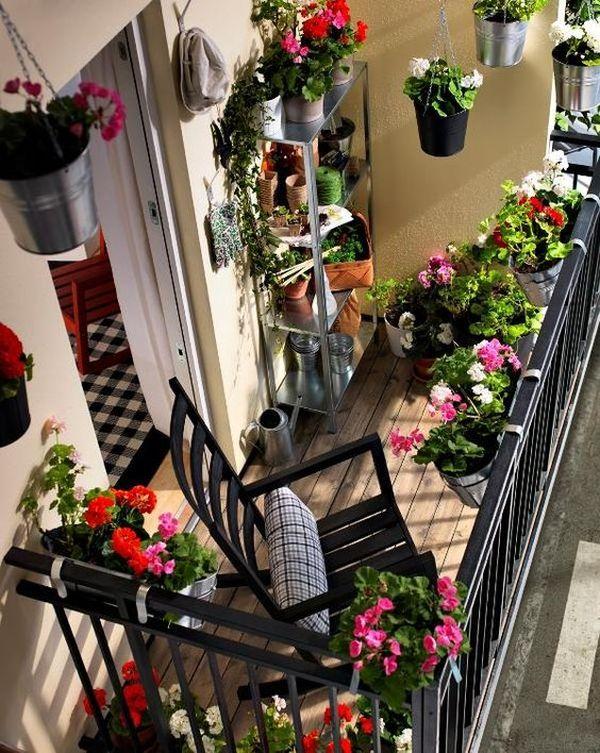 balconul 10