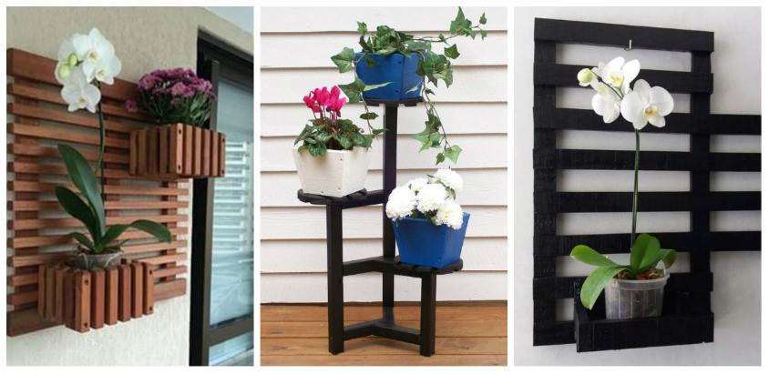 Cele mai frumoase idei practice de suporturi pentru plantele decorative