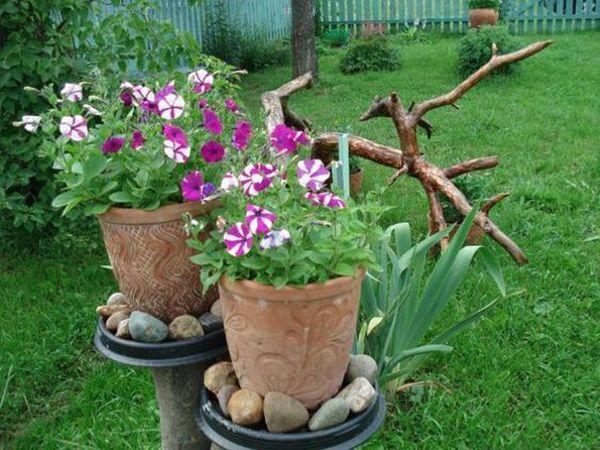 aranjamente din flori colorate