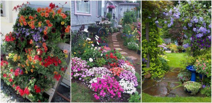 idei de amenajari cu flori