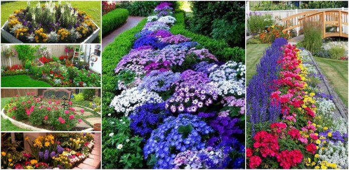 flori bogate